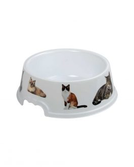 PET FOOD/WATER BOWL 1L W/PICTURES RD