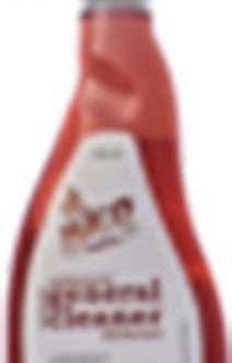 BIEN SPRAY GEN.CLEANER PINE 750ML
